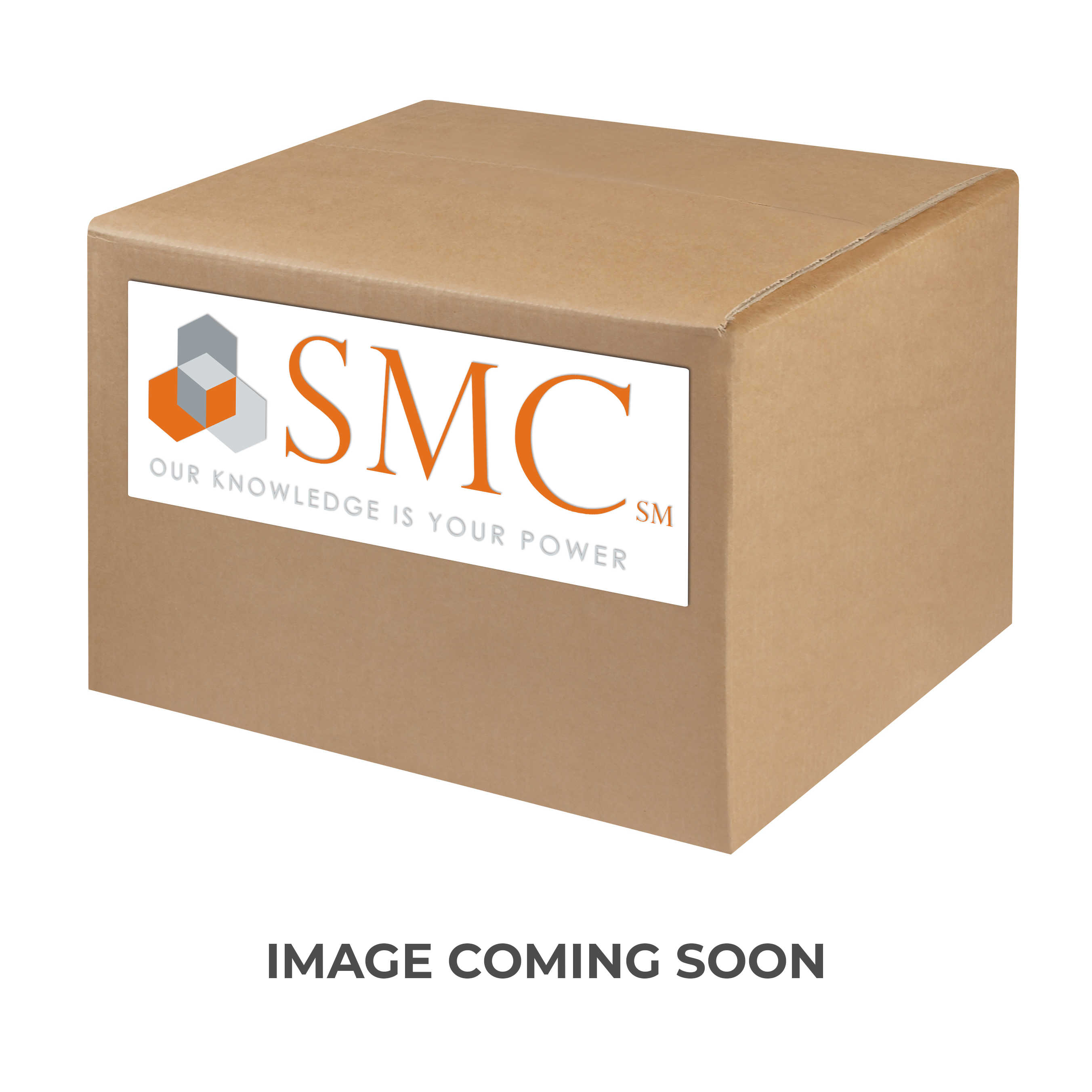 SMC® AN101-N01 AN Series Silencer, 1/8 in NPT Inlet, 1 MPa